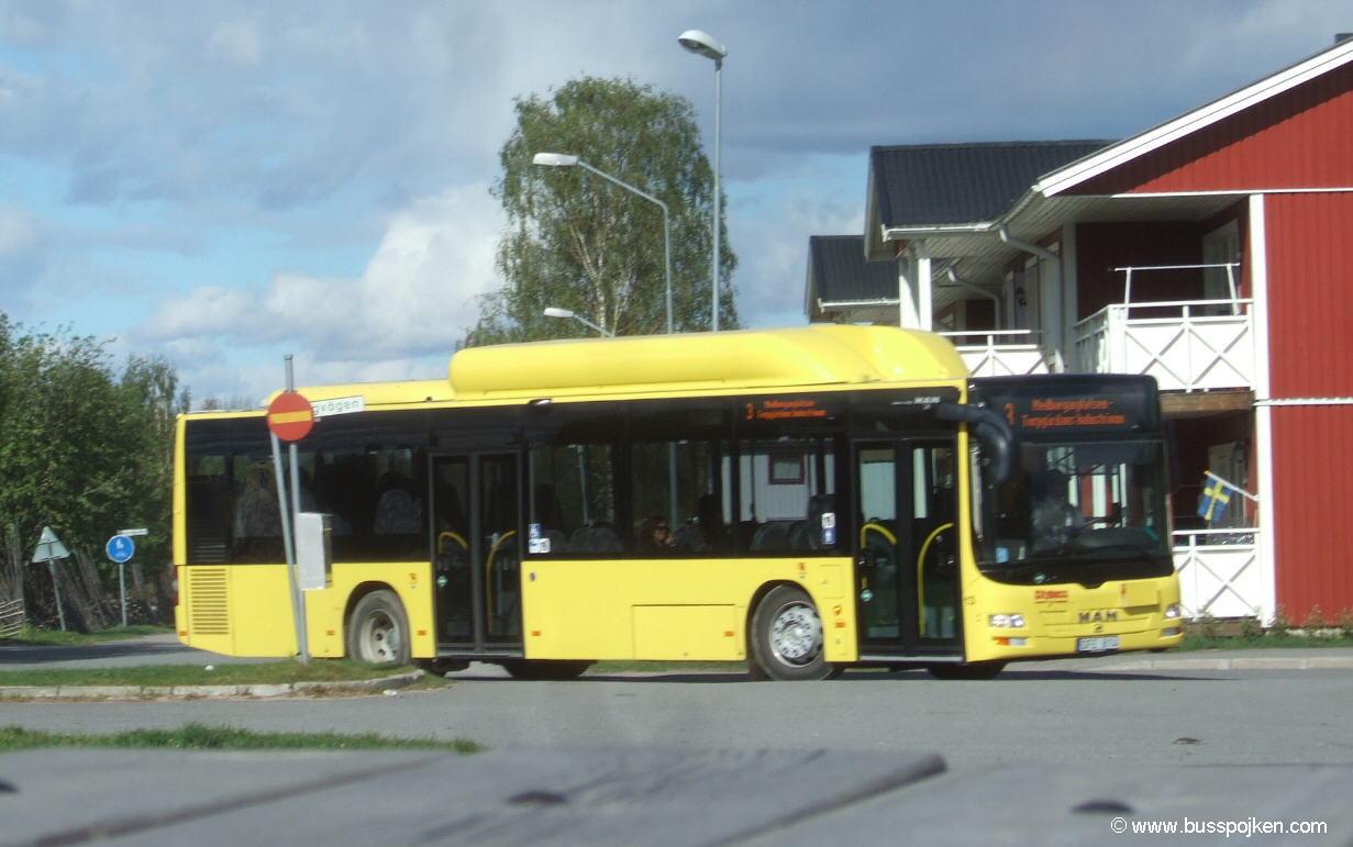 Bodenbuss 13.